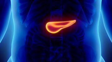 Informacion_Sobre_Diabetes_Cómo_Medir_Resistencia_Insulina_shutterstock_496717501_830x420px